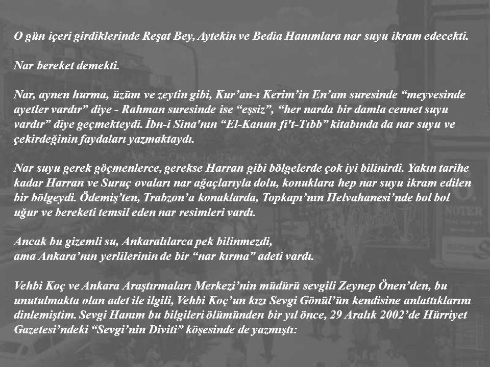 14 Kasım 1953, Cumartesi; Ankara. Daha dört gün önce Ata'sının naaşının Etnografya Müzesi'nden alınıp Rasattepe'deki Anıtkabir'e getirilişini gözyaşla