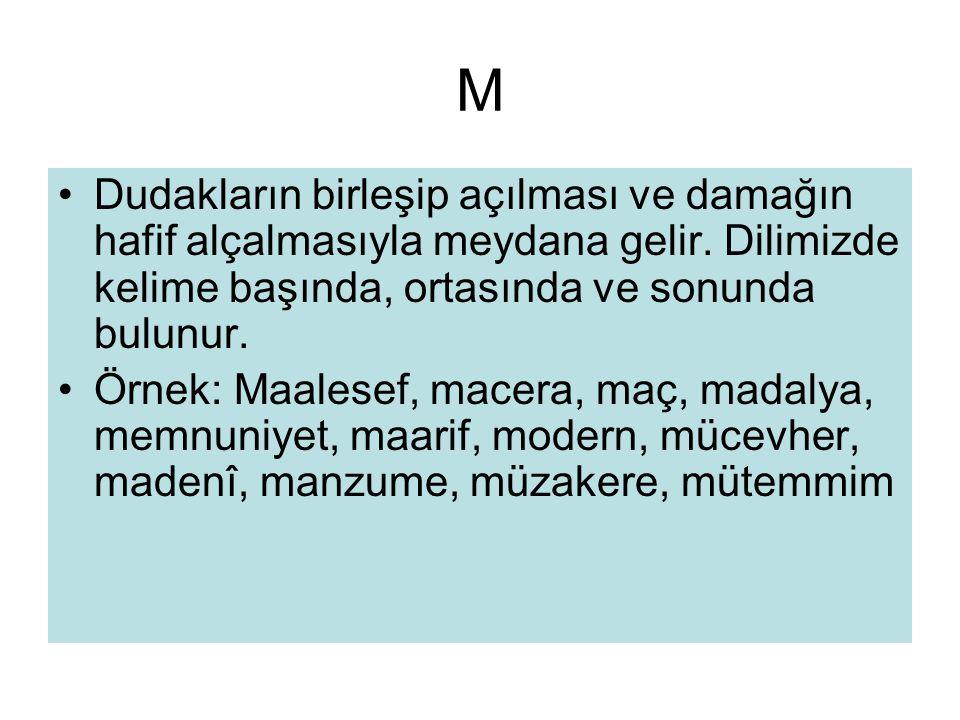 M •Dudakların birleşip açılması ve damağın hafif alçalmasıyla meydana gelir. Dilimizde kelime başında, ortasında ve sonunda bulunur. •Örnek: Maalesef,