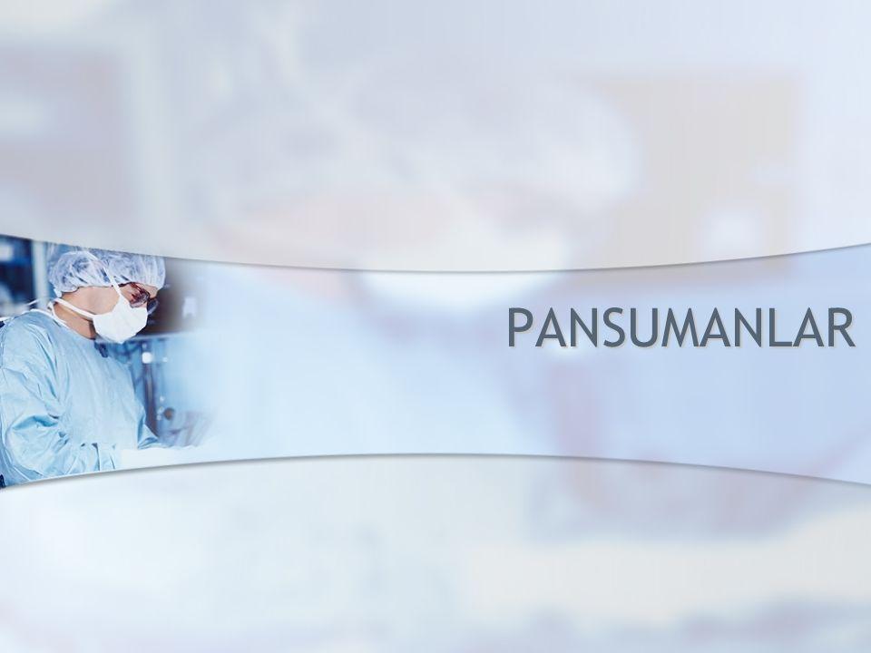 PANSUMANLAR PANSUMANLAR