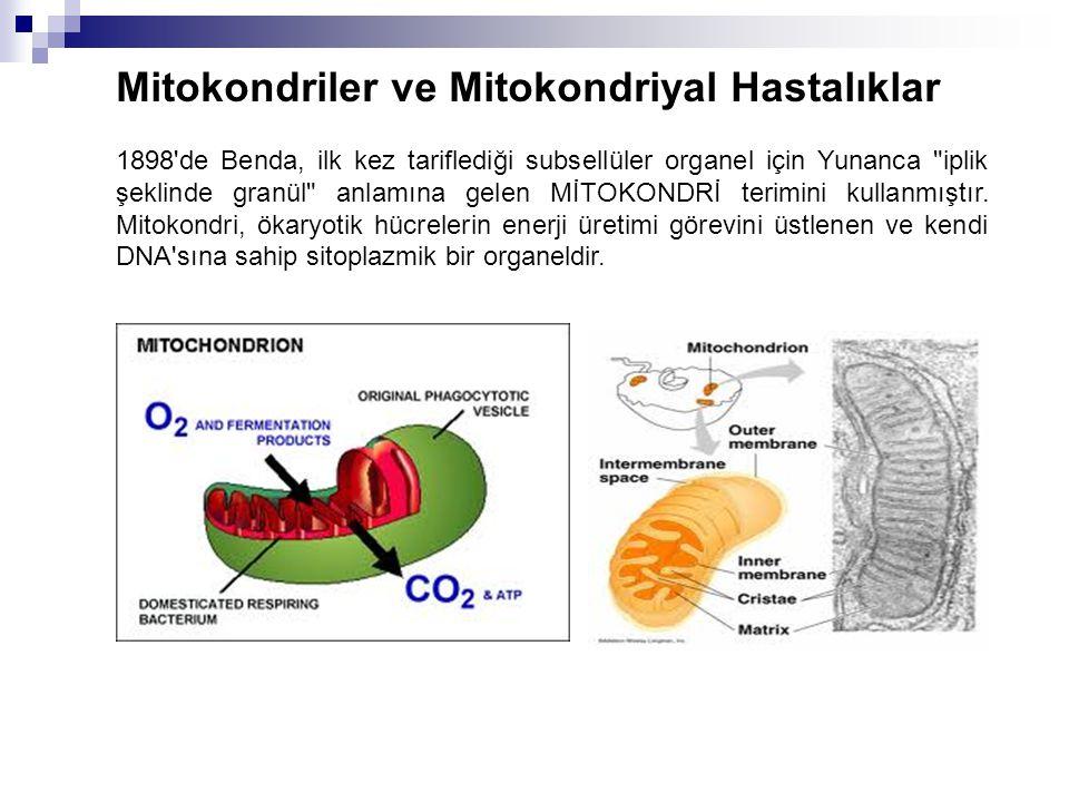 Mitokondriler ve Mitokondriyal Hastalıklar 1898'de Benda, ilk kez tariflediği subsellüler organel için Yunanca