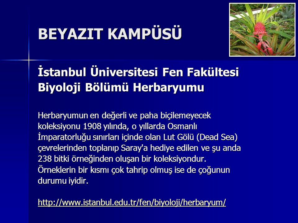 BEYAZIT KAMPÜSÜ İstanbul Üniversitesi Fen Fakültesi Biyoloji Bölümü Herbaryumu Herbaryumun en değerli ve paha biçilemeyecek koleksiyonu 1908 yılında, o yıllarda Osmanlı İmparatorluğu sınırları içinde olan Lut Gölü (Dead Sea) çevrelerinden toplanıp Saray a hediye edilen ve şu anda 238 bitki örneğinden oluşan bir koleksiyondur.