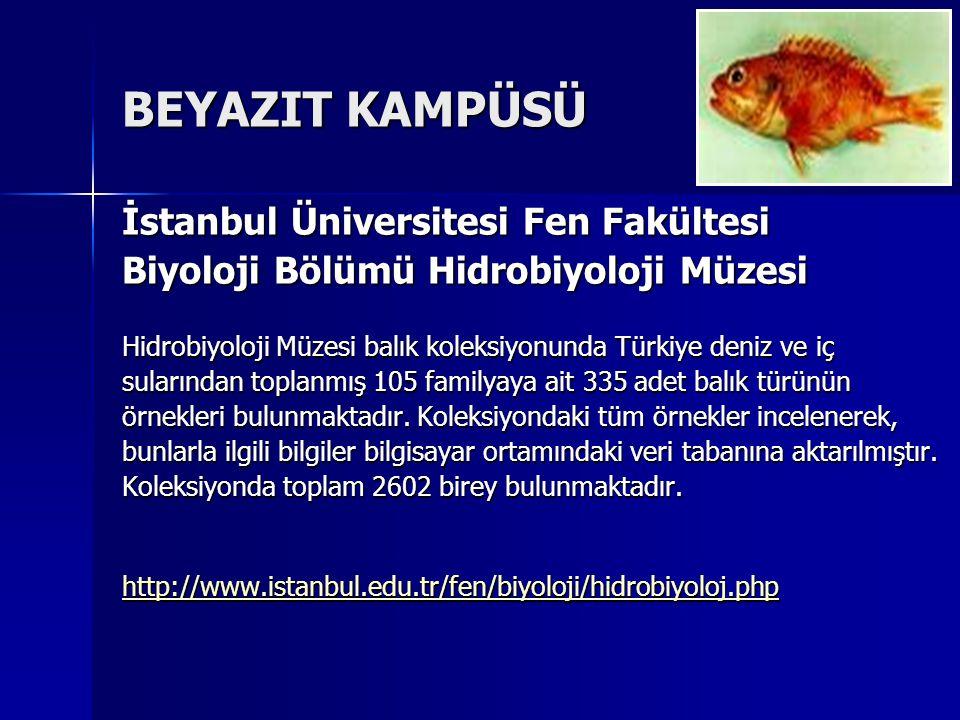 BEYAZIT KAMPÜSÜ İstanbul Üniversitesi Fen Fakültesi Biyoloji Bölümü Hidrobiyoloji Müzesi Hidrobiyoloji Müzesi balık koleksiyonunda Türkiye deniz ve iç sularından toplanmış 105 familyaya ait 335 adet balık türünün örnekleri bulunmaktadır.