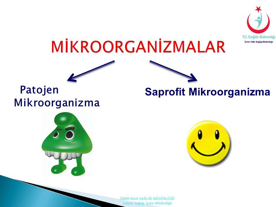 MİKROORGANİZMALAR Patojen Mikroorganizma Saprofit Mikroorganizma İZMİR HALK SAĞLIĞI MÜDÜRLÜĞÜ Çalışan Sağlığı Şube Müdürlüğü