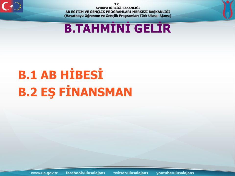B.TAHMİNİ GELİR B.1 AB HİBESİ B.2 EŞ FİNANSMAN