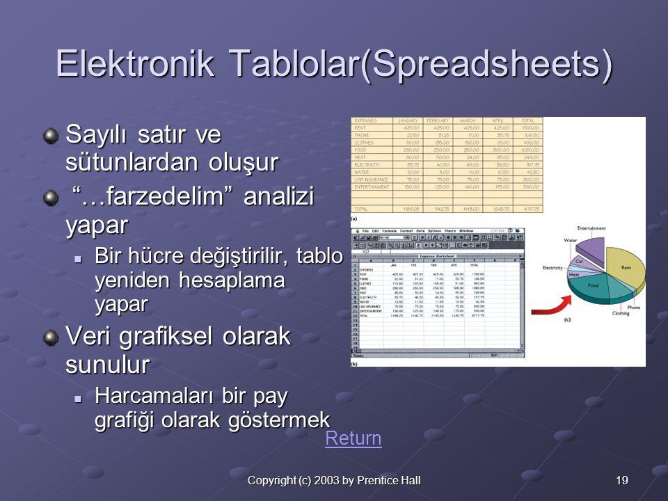 19Copyright (c) 2003 by Prentice Hall Elektronik Tablolar(Spreadsheets) Sayılı satır ve sütunlardan oluşur …farzedelim analizi yapar …farzedelim analizi yapar  Bir hücre değiştirilir, tablo yeniden hesaplama yapar Veri grafiksel olarak sunulur  Harcamaları bir pay grafiği olarak göstermek Return