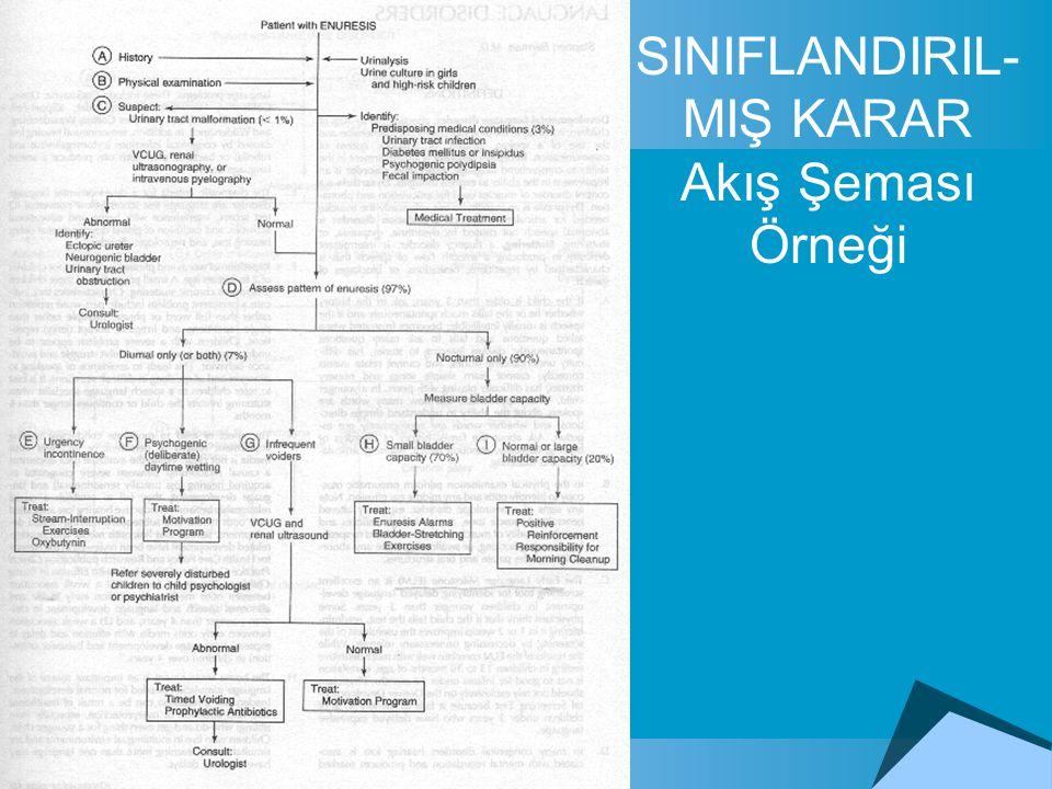 SINIFLANDIRIL- MIŞ KARAR Akış Şeması Örneği
