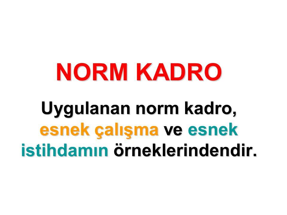 NORM KADRO Uygulanan norm kadro, esnek çalışma ve esnek istihdamın örneklerindendir.