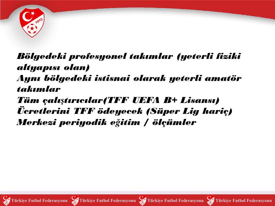 Akademi ligine katılacak profesyonel veya amatör takımların 2008-2009 sezonunda 13-14-15 ya ş grubu takımalara sahip olması, kendilerine ait antrenman ve nizami ölçülerde (çim/sentetik) maç sahası olması ve Uefa lisanslı antrenöre sahip olması.gerekmektedir.Akademi kriterlerine uyan takımların antrenörleri TFF tarafından ücretsiz olarak Uefa B+ lisansı seviyesinde ücretsiz olarak e ğ itileceklerdir.