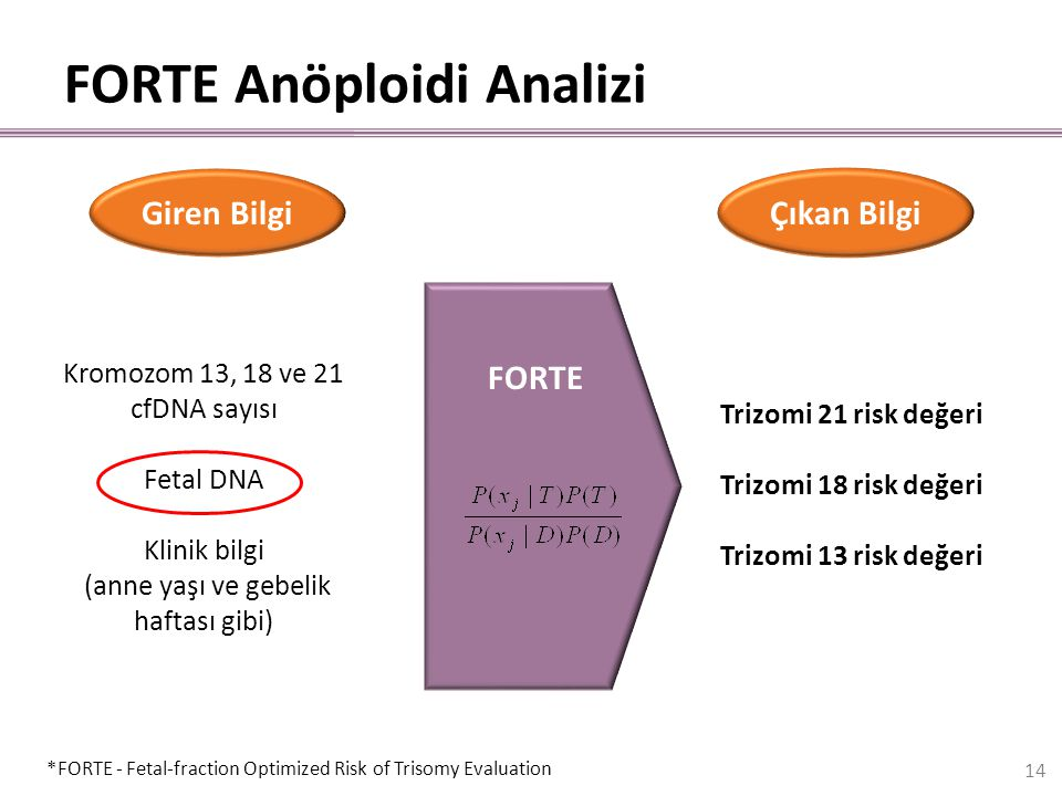 FORTE FORTE Anöploidi Analizi Kromozom 13, 18 ve 21 cfDNA sayısı Fetal DNA Klinik bilgi (anne yaşı ve gebelik haftası gibi) Trizomi 21 risk değeri Tri