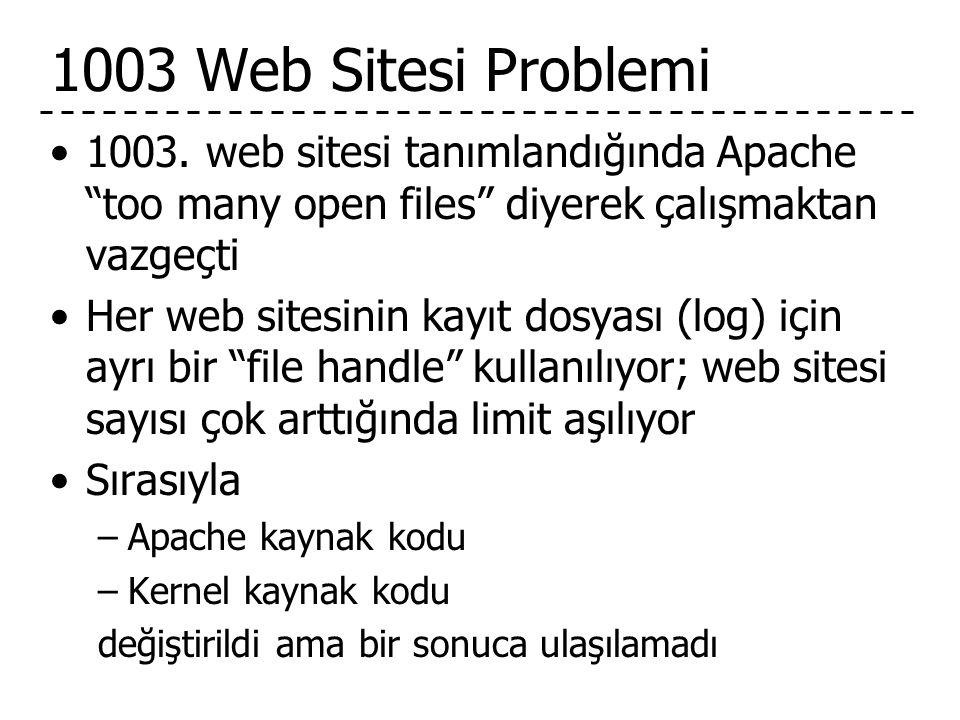 1003 Web Sitesi Problemi •1003.