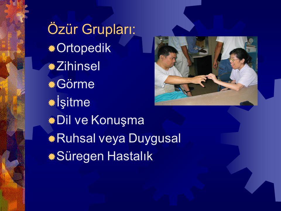 Özür Grupları:  Ortopedik  Zihinsel  Görme  İşitme  Dil ve Konuşma  Ruhsal veya Duygusal  Süregen Hastalık