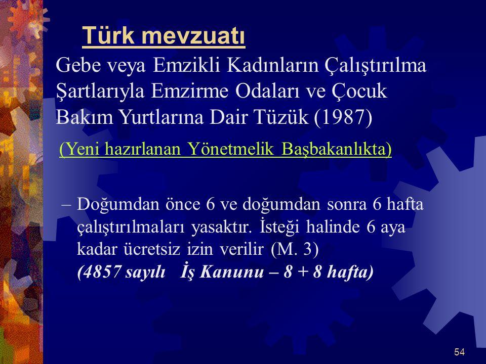 54 Türk mevzuatı Gebe veya Emzikli Kadınların Çalıştırılma Şartlarıyla Emzirme Odaları ve Çocuk Bakım Yurtlarına Dair Tüzük (1987) (Yeni hazırlanan Yö