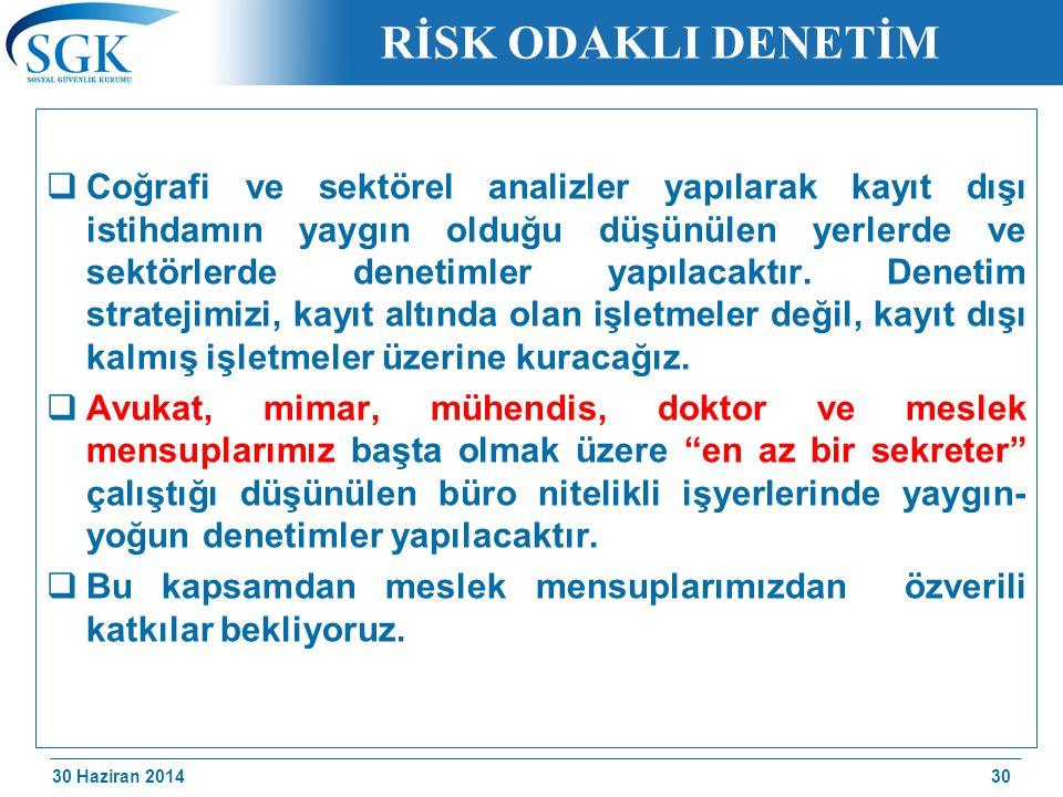30 Haziran 2014 /174 RİSK ODAKLI DENETİM  Coğrafi ve sektörel analizler yapılarak kayıt dışı istihdamın yaygın olduğu düşünülen yerlerde ve sektörler