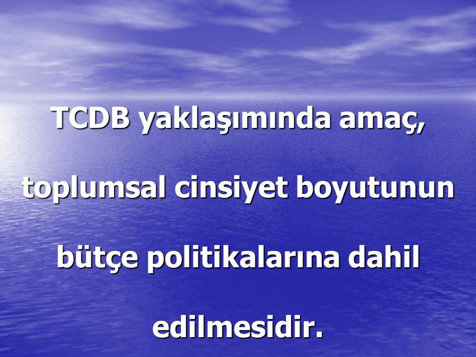 Türkiye'de Yerel Yönetimlerde Cinsiyet Bütçesi Uygulamaları Diğer taraftan AB'den alınan projeler kapsamında da cinsiyete duyarlı bütçe uygulamaları çeşitli illerde yürütülmektedir.