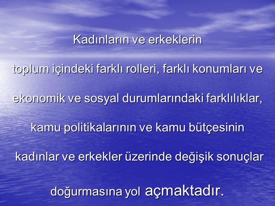 Bursa Nilüfer Belediyesi 2010-2011 yıllarını kapsayan Stratejik Planını ve bütçesini cinsiyete duyarlı bir biçimde yapmıştır.