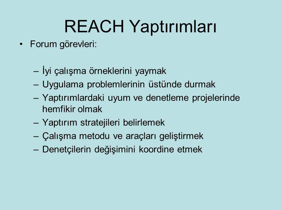 REACH Yaptırımları •Forum görevleri: –İyi çalışma örneklerini yaymak –Uygulama problemlerinin üstünde durmak –Yaptırımlardaki uyum ve denetleme projelerinde hemfikir olmak –Yaptırım stratejileri belirlemek –Çalışma metodu ve araçları geliştirmek –Denetçilerin değişimini koordine etmek