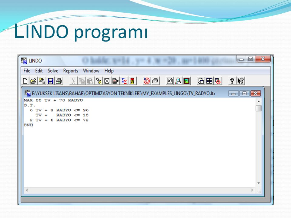 L INDO programı
