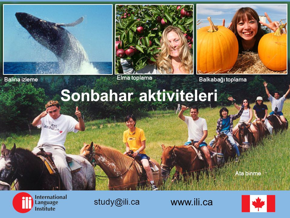 www.ili.ca study@ili.ca Balina izleme Sonbahar aktiviteleri Elma toplama Balkabağı toplama Ata binme