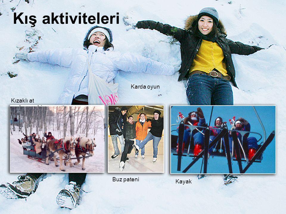 www.ili.ca study@ili.ca Kış aktiviteleri Kızaklı at arabasına binme Kayak Buz pateni Karda oyun