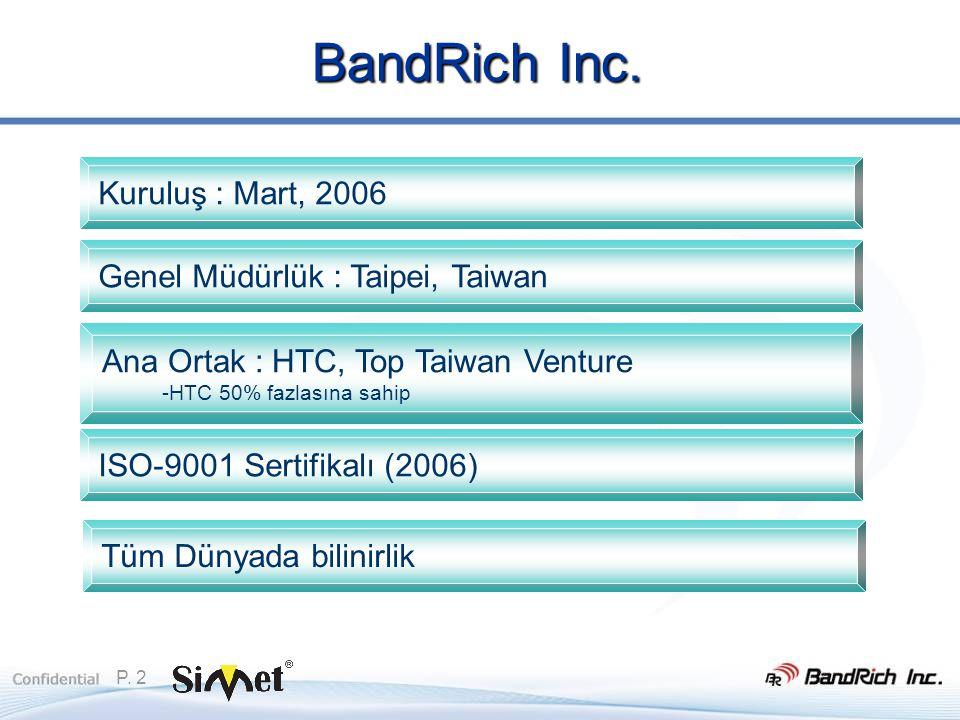 P. 2 BandRich Inc.