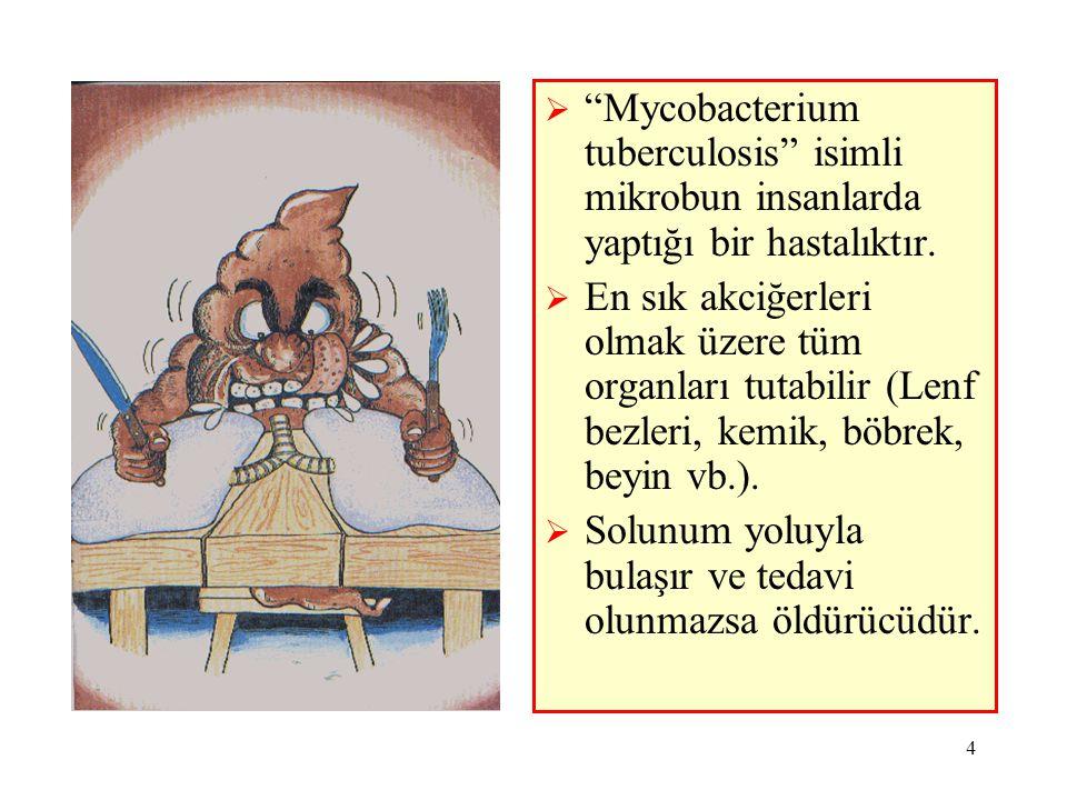 """4  """"Mycobacterium tuberculosis"""" isimli mikrobun insanlarda yaptığı bir hastalıktır.  En sık akciğerleri olmak üzere tüm organları tutabilir (Lenf be"""