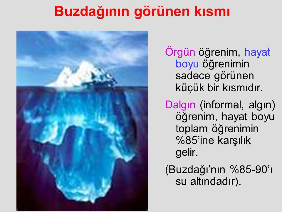Buzdağının görünen kısmı Örgün öğrenim, hayat boyu öğrenimin sadece görünen küçük bir kısmıdır. Dalgın (informal, algın) öğrenim, hayat boyu toplam öğ