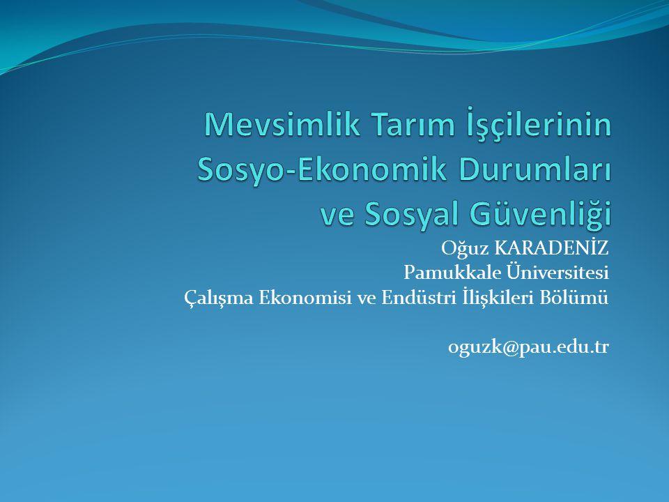 Oğuz KARADENİZ Pamukkale Üniversitesi Çalışma Ekonomisi ve Endüstri İlişkileri Bölümü oguzk@pau.edu.tr