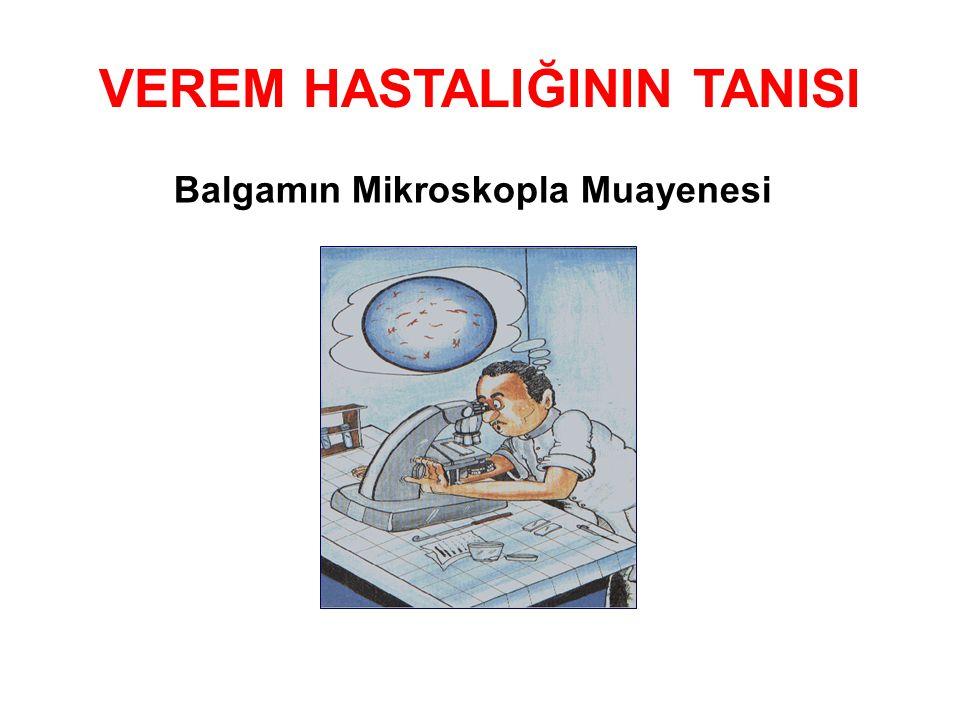 VEREM HASTALIĞININ TANISI Balgamın Mikroskopla Muayenesi