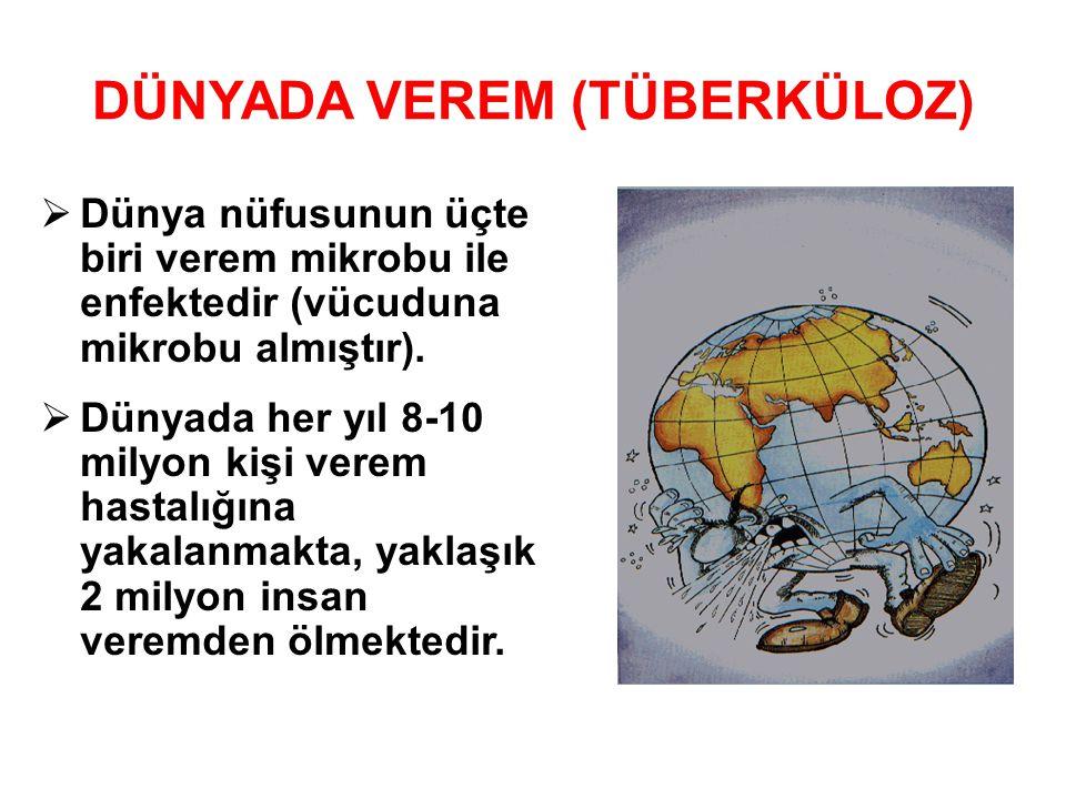 Tüberküloz'daki artış gelişmekte olan ülkelerde yüksektir.
