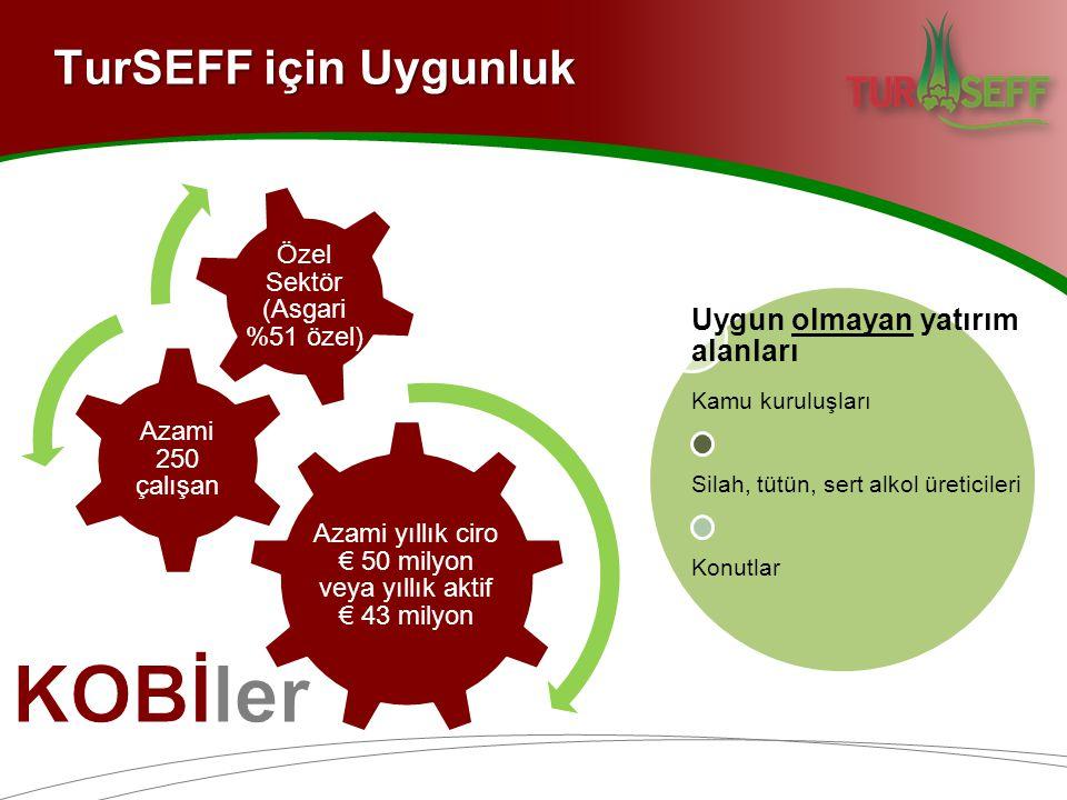 TurSEFF için Uygunluk Azami yıllık ciro € 50 milyon veya yıllık aktif € 43 milyon Azami 250 çalışan Özel Sektör (Asgari %51 özel) Uygun olmayan yatırım alanları Kamu kuruluşları Silah, tütün, sert alkol üreticileri Konutlar