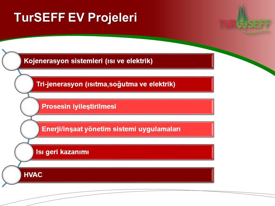Kojenerasyon sistemleri (ısı ve elektrik) Tri-jenerasyon (ısıtma,soğutma ve elektrik) Prosesin iyileştirilmesi Enerji/inşaat yönetim sistemi uygulamaları Isı geri kazanımı HVAC TurSEFF EV Projeleri