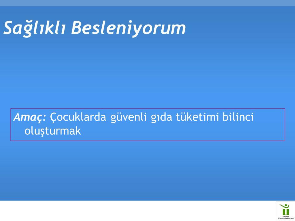 Sağlıklı Bilgisayar Kullanımı Proje hedefleri  Konferanslar  Avrupa ve Türkiye'de Eğitim Müfredatına dersler konulması  Türkiye'de Bilgisayar satan tüm bilgisayar markalarının broşür dağıtımını zorunlu hale getirmek  Web Sitesi  Broşür