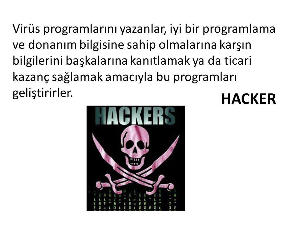 Virüsler Neler Yapar.Bize ait şifreleri çalar!!.
