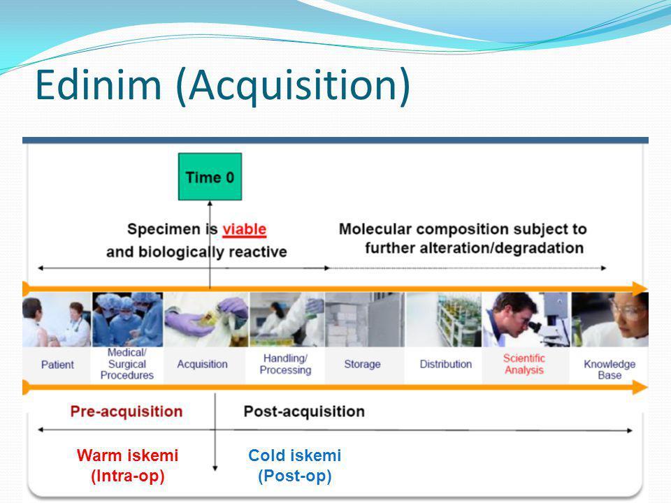 Edinim (Acquisition) Warm iskemi (Intra-op) Cold iskemi (Post-op)
