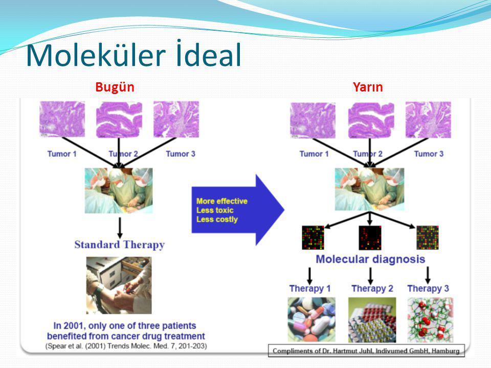 Biyopsi lokasyonu ve kolon kanserde VEGF ekspresyonu