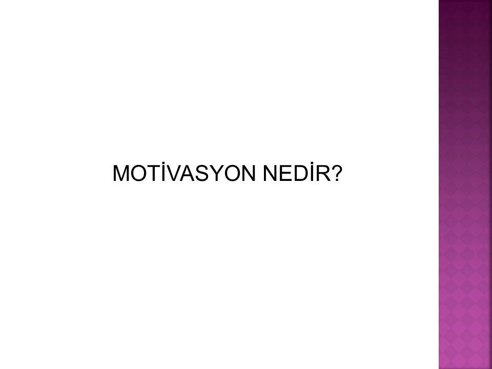 MOTİVASYON NEDİR?