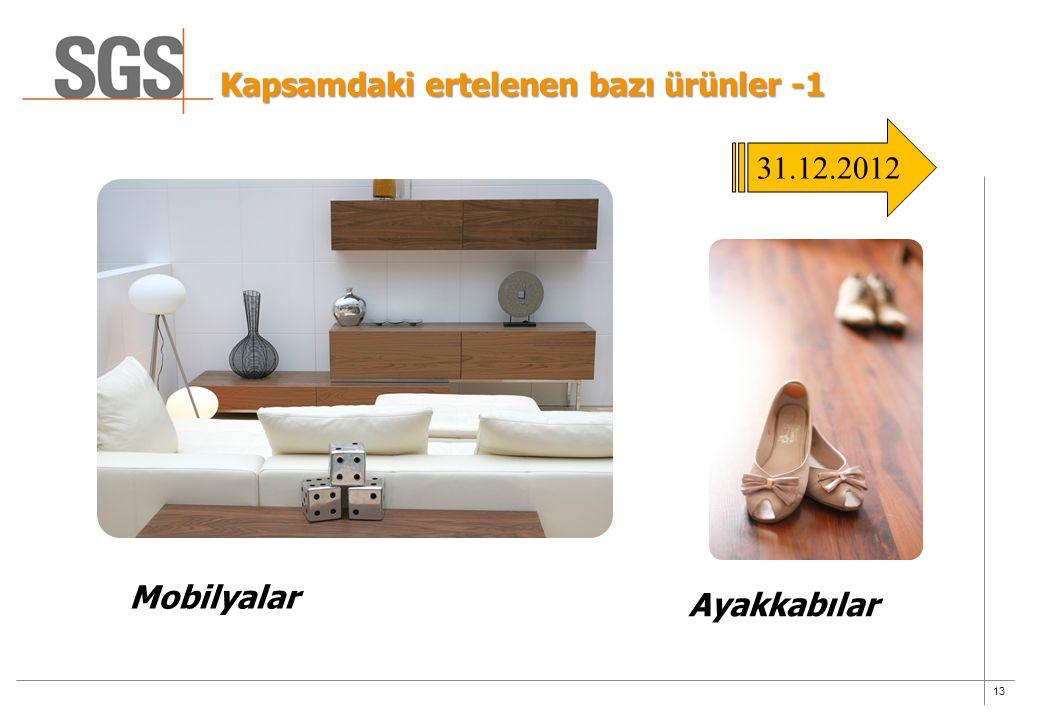 13 Kapsamdaki ertelenen bazı ürünler -1 Mobilyalar Ayakkabılar 31.12.2012