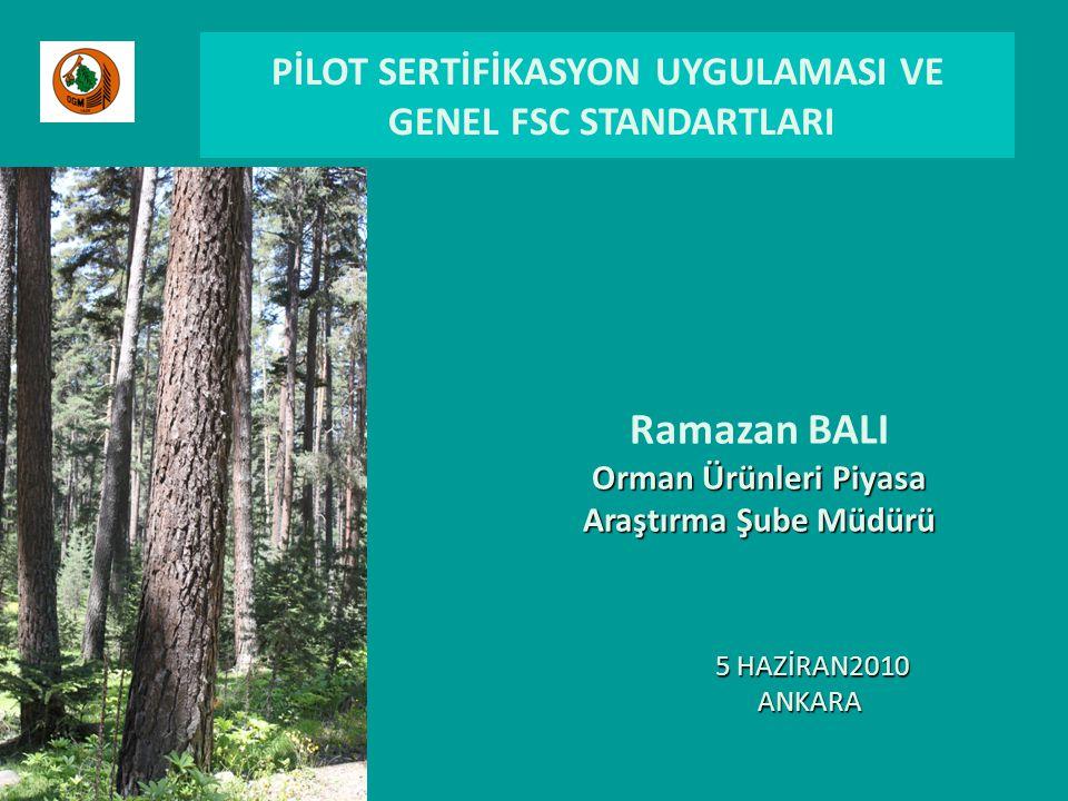 PİLOT SERTİFİKASYON UYGULAMASI VE GENEL FSC STANDARTLARI Ramazan BALI Orman Ürünleri Piyasa Araştırma Şube Müdürü 5 HAZİRAN2010 ANKARA 5 HAZİRAN2010 ANKARA