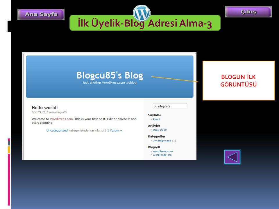 İlk Üyelik-Blog Adresi Alma-3 BLOGUN İLK GÖRÜNTÜSÜ