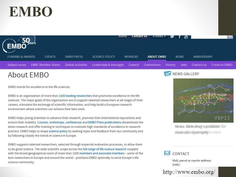 http://www.embo.org/ EMBO