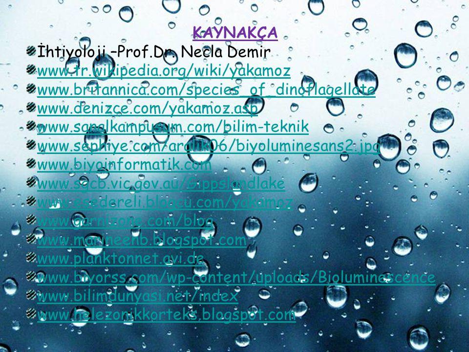 Page 18 Powerpoint Templates KAYNAKÇA İhtiyoloji –Prof.Dr. Necla Demir www.tr.wikipedia.org/wiki/yakamoz www.britannica.com/species_of_dinoflagellate