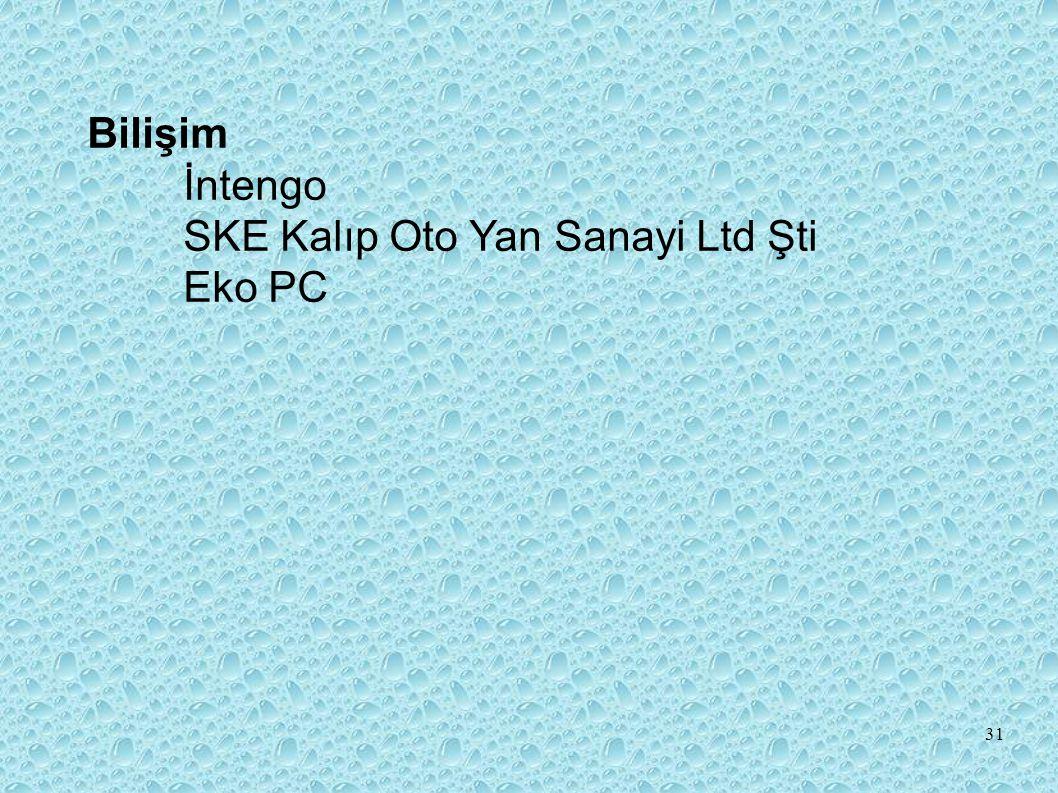 Bilişim İntengo SKE Kalıp Oto Yan Sanayi Ltd Şti Eko PC 31