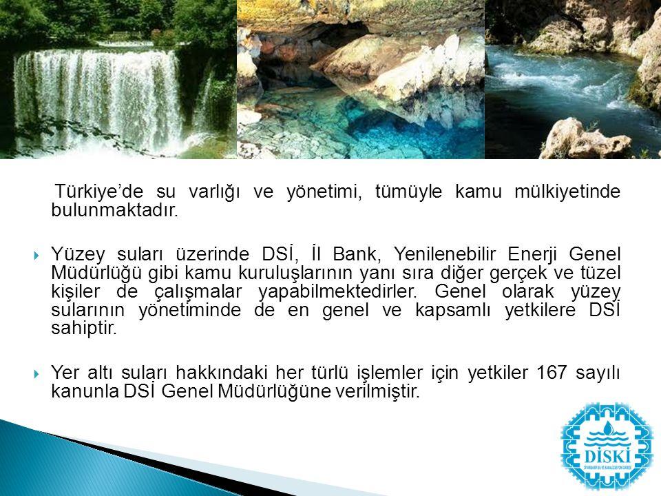 Türkiye'de su varlığı ve yönetimi, tümüyle kamu mülkiyetinde bulunmaktadır.  Yüzey suları üzerinde DSİ, İl Bank, Yenilenebilir Enerji Genel Müdürlüğü