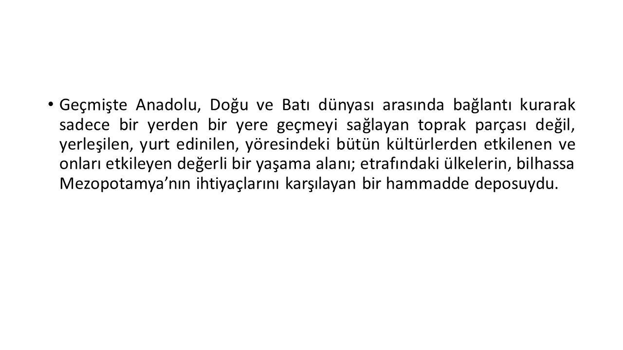 • Anadolu'da, yerli toplumlar tarafından kurulmuş Hattuş, Kaniş, Kuşşara, Zalpa krallıkları gibi birçok şehir devleti bulunuyordu.