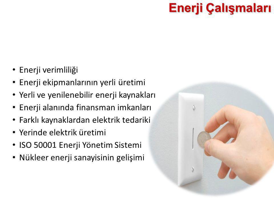 Enerji Çalışmaları • Enerji verimliliği • Enerji ekipmanlarının yerli üretimi • Yerli ve yenilenebilir enerji kaynakları • Enerji alanında finansman i