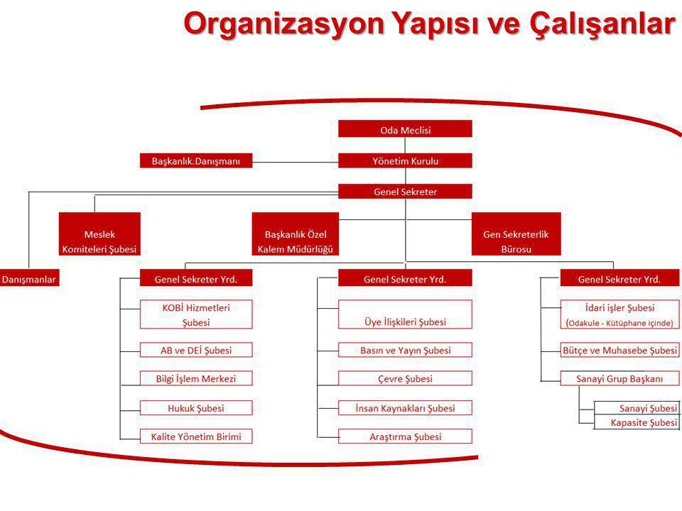 Organizasyon Yapısı ve Çalışanlar
