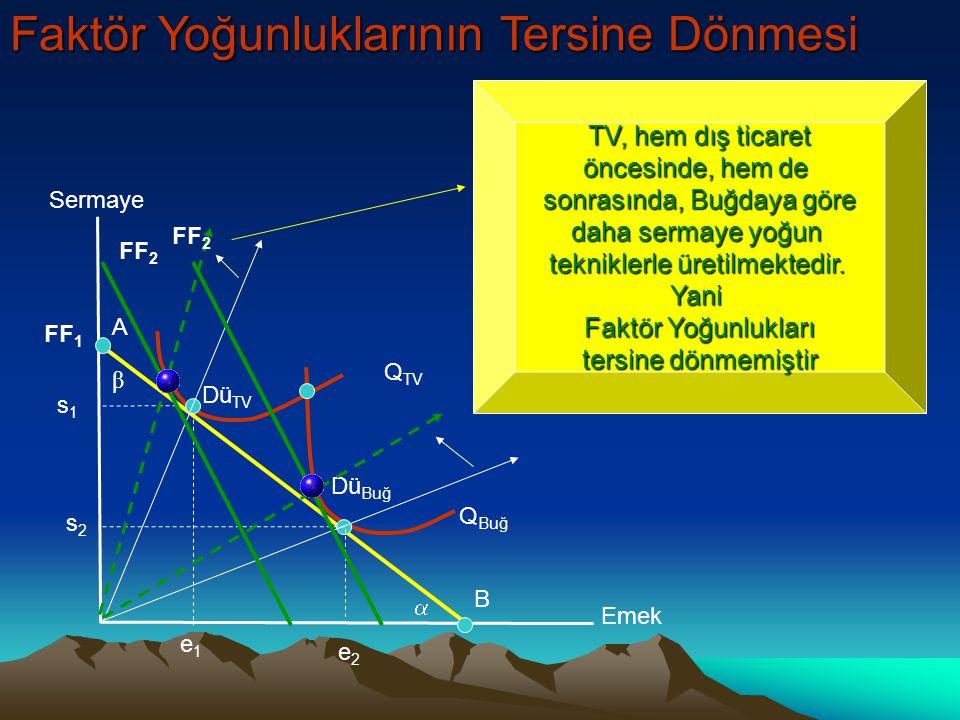 B A  β Sermaye Emek Q TV Q Buğ Dü TV Dü Buğ s1s1 s2s2 e1e1 e2e2 Buğday, hem dış ticaret öncesinde, hem de sonrasında, TV'ye göre emek yoğun tekniklerle üretilmektedir.