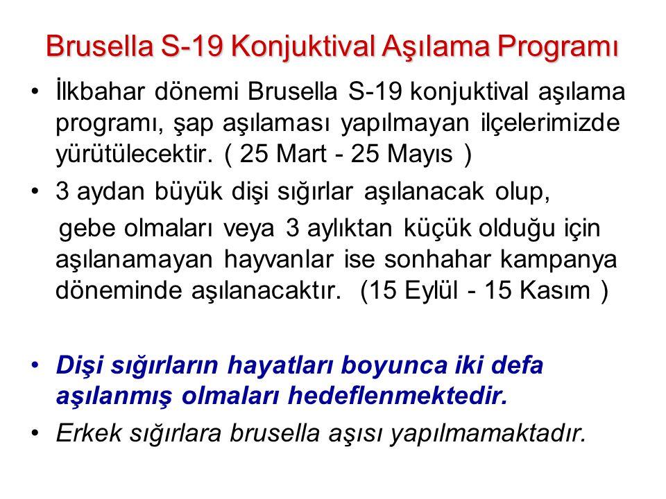 Brusella S-19 Konjuktival Aşılama Programı Brusella S-19 Konjuktival Aşılama Programı •İlkbahar dönemi Brusella S-19 konjuktival aşılama programı, şap