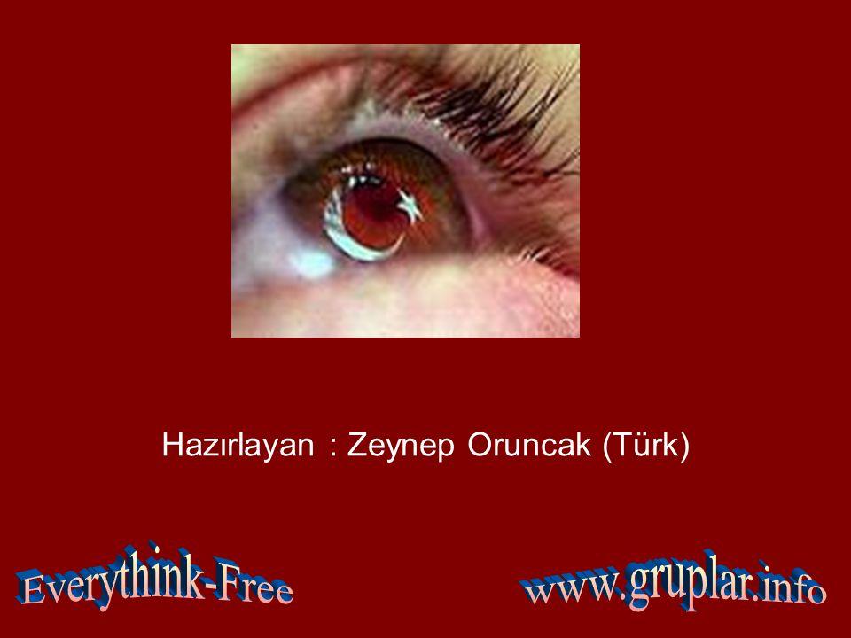 Hazırlayan : Zeynep Oruncak (Türk)