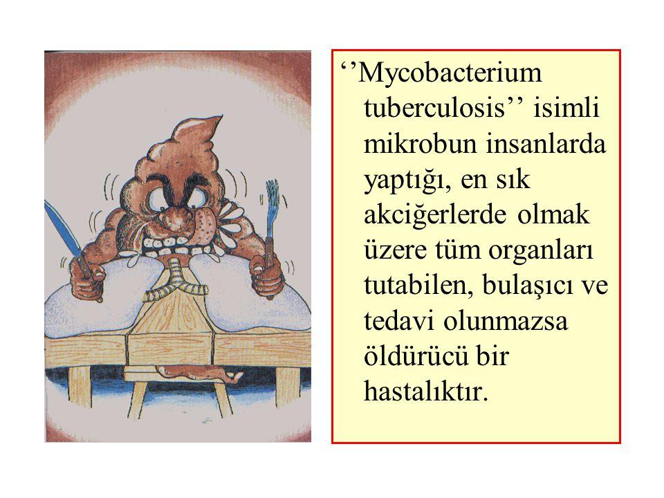 Bugün, dünya nüfusunun üçte biri (yaklaşık 2 milyar kişi) verem mikrobu ile enfektedir.